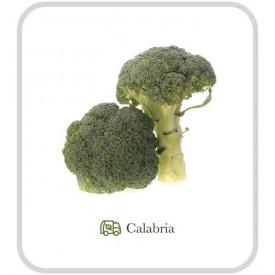Broccolo Verde - 500 g