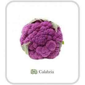 Cavolfiore Viola - 1 pz (ca. 1 kg)